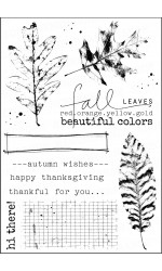 Fall Colors Stamp Set